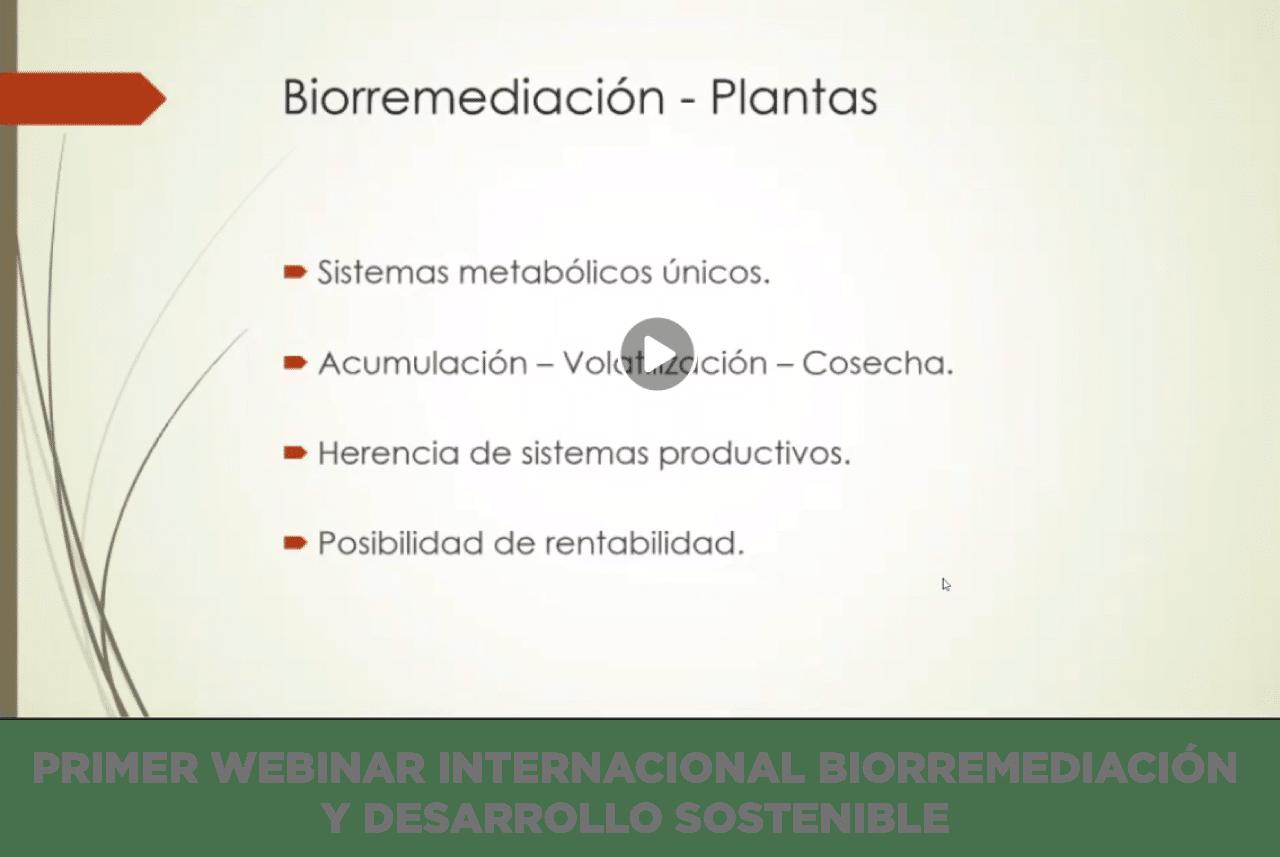 PRIMER WEBINAR INTERNACIONAL BIORREMEDIACIÓN Y DESARROLLO SOSTENIBLE